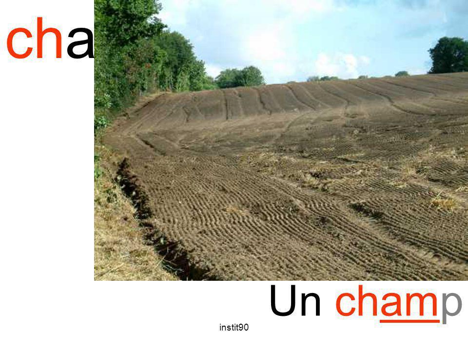 instit90 cham champ Un champ