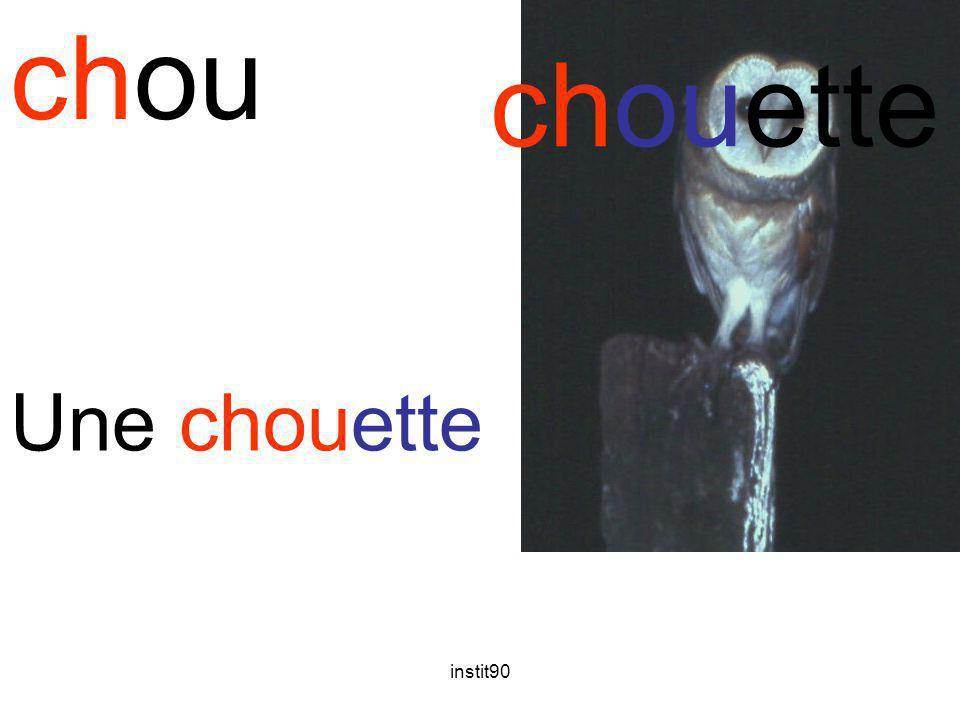 instit90 chou chouette Une chouette