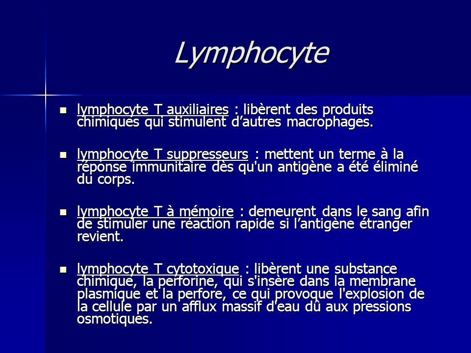 Lymphocyte  lymphocyte T auxiliaires : libèrent des produits chimiques qui stimulent d'autres macrophages.  lymphocyte T suppresseurs : mettent un t