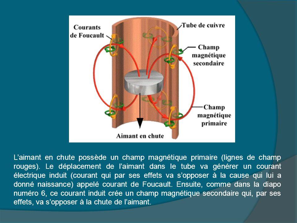 L'aimant en chute possède un champ magnétique primaire (lignes de champ rouges). Le déplacement de l'aimant dans le tube va générer un courant électri