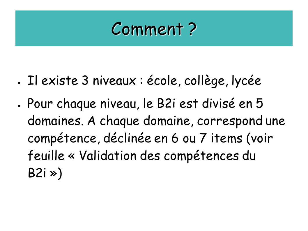Comment ? ● Il existe 3 niveaux : école, collège, lycée ● Pour chaque niveau, le B2i est divisé en 5 domaines. A chaque domaine, correspond une compét