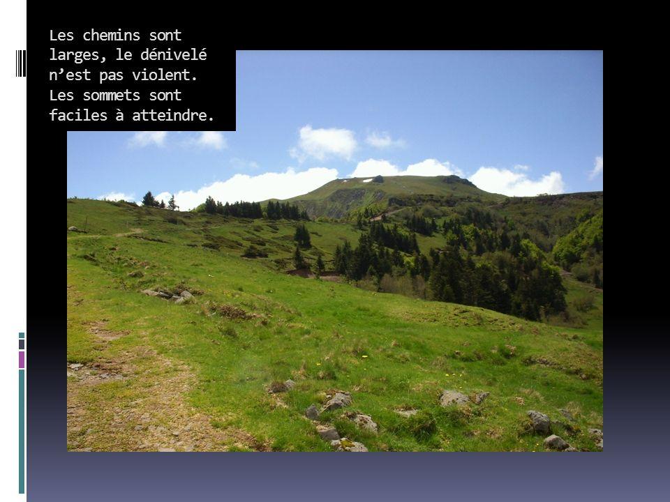 Les chemins sont larges, le dénivelé n'est pas violent. Les sommets sont faciles à atteindre.