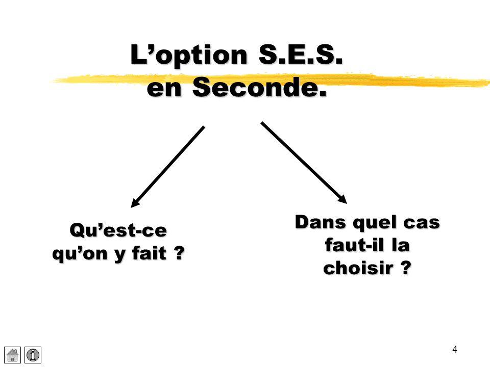 4 L'option S.E.S. en Seconde. Qu'est-ce qu'on y fait ? Dans quel cas faut-il la choisir ?