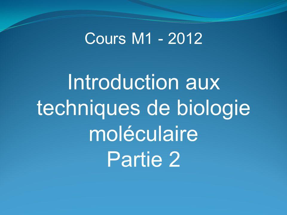 Cours M1 - 2012 Introduction aux techniques de biologie moléculaire Partie 2