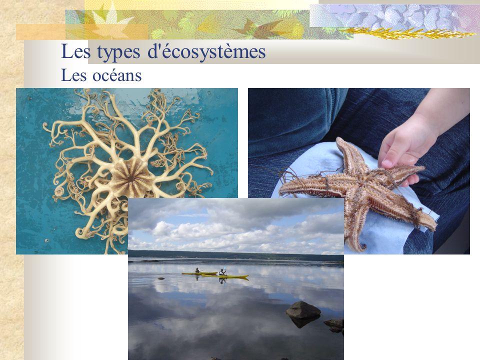 Les types d'écosystèmes Les océans