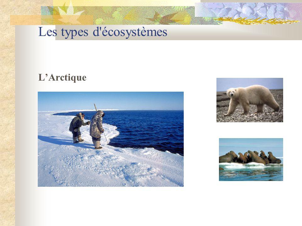 Les types d'écosystèmes L'Arctique