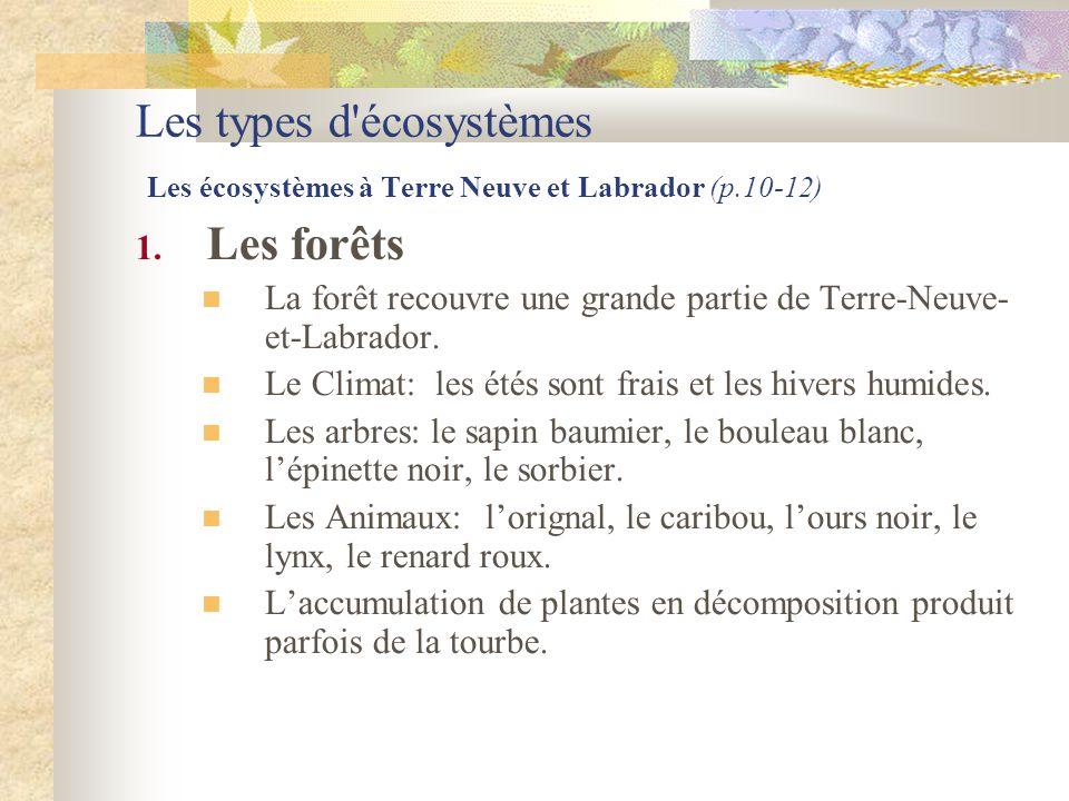 Les types d'écosystèmes Les écosystèmes à Terre Neuve et Labrador (p.10-12) 1. Les forêts  La forêt recouvre une grande partie de Terre-Neuve- et-Lab