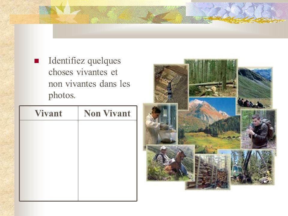 Utilisez votre liste de diapositive #2, décrivez comment les êtres vivants interagissent avec les êtres vivants, les non vivants, et les conditions locales.