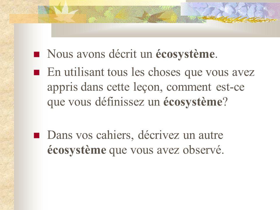  Nous avons décrit un écosystème.  En utilisant tous les choses que vous avez appris dans cette leçon, comment est-ce que vous définissez un écosyst