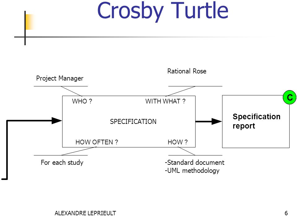 ALEXANDRE LEPRIEULT 6 Crosby Turtle Specification report WHO ?WITH WHAT ? HOW OFTEN ?HOW ? SPECIFICATION C For each study Project Manager -Standard do