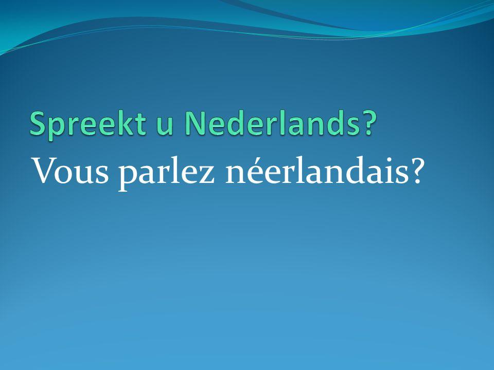 Vous parlez néerlandais?