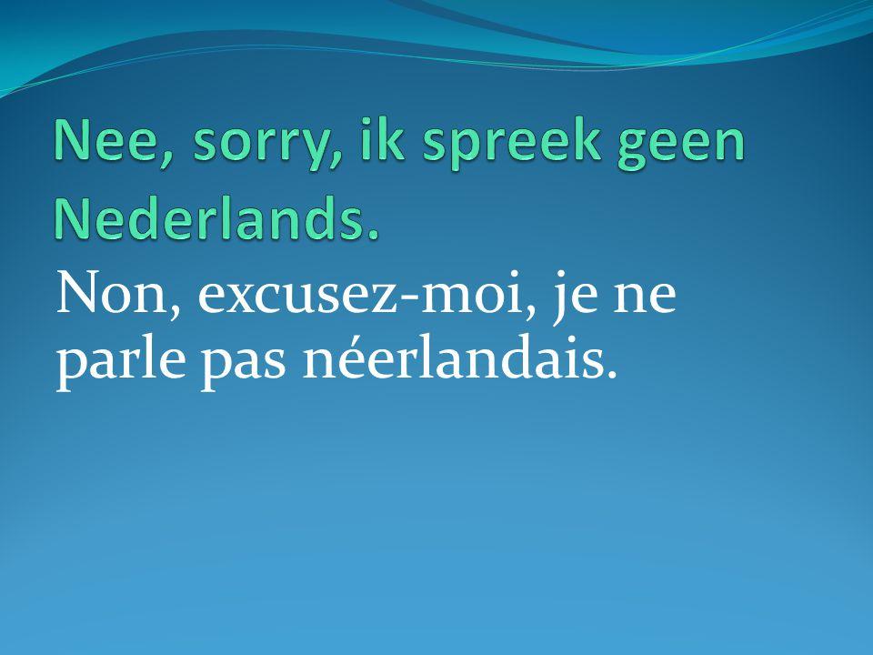 Non, excusez-moi, je ne parle pas néerlandais.