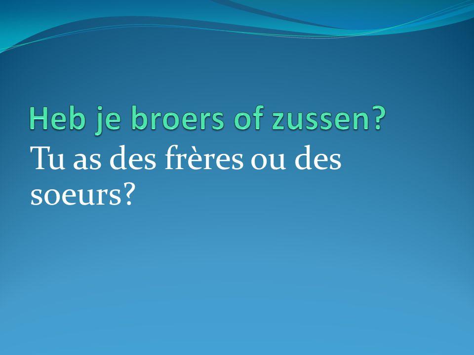 Tu as des frères ou des soeurs?