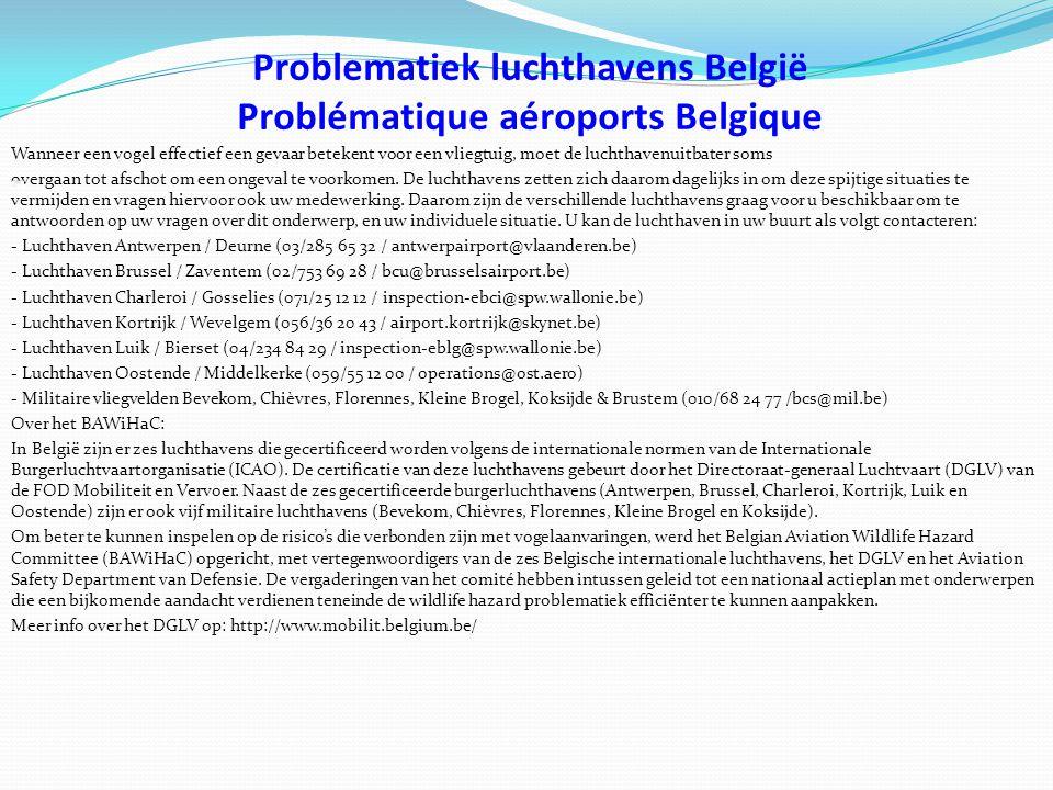 Problematiek luchthavens België Problématique aéroports Belgique Wanneer een vogel effectief een gevaar betekent voor een vliegtuig, moet de luchthavenuitbater soms overgaan tot afschot om een ongeval te voorkomen.
