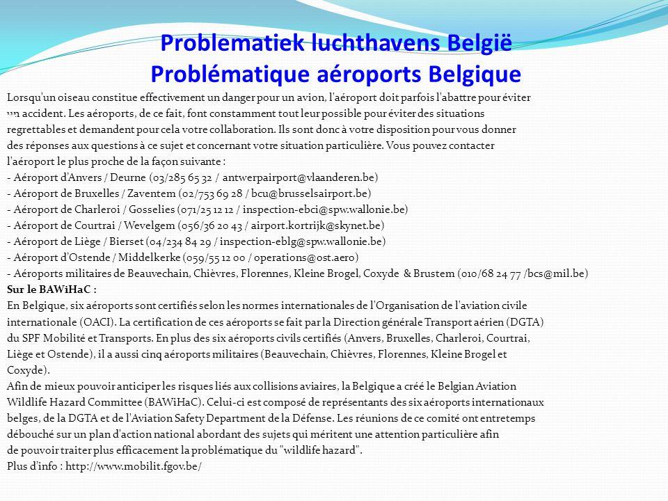 Problematiek luchthavens België Problématique aéroports Belgique Lorsqu un oiseau constitue effectivement un danger pour un avion, l aéroport doit parfois l abattre pour éviter un accident.