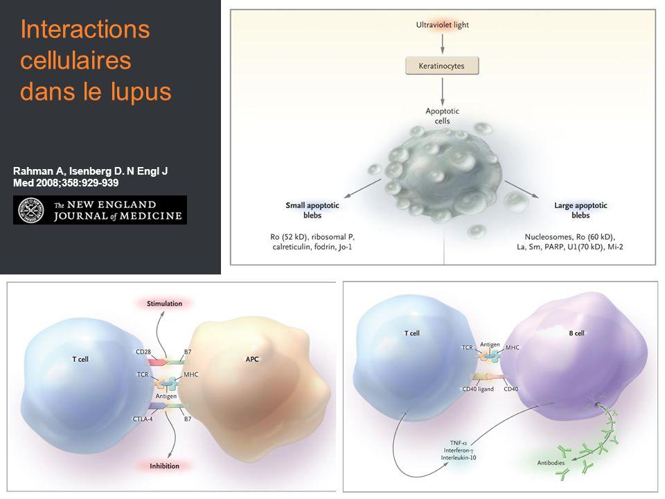 Rahman A, Isenberg D. N Engl J Med 2008;358:929-939 Interactions cellulaires dans le lupus