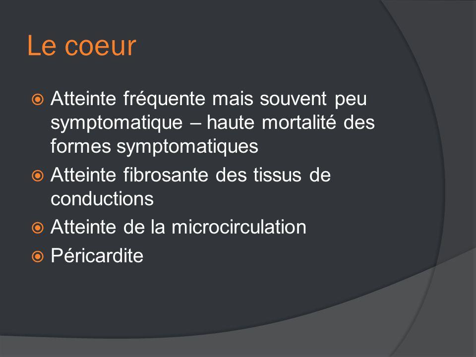 Le coeur  Atteinte fréquente mais souvent peu symptomatique – haute mortalité des formes symptomatiques  Atteinte fibrosante des tissus de conductions  Atteinte de la microcirculation  Péricardite
