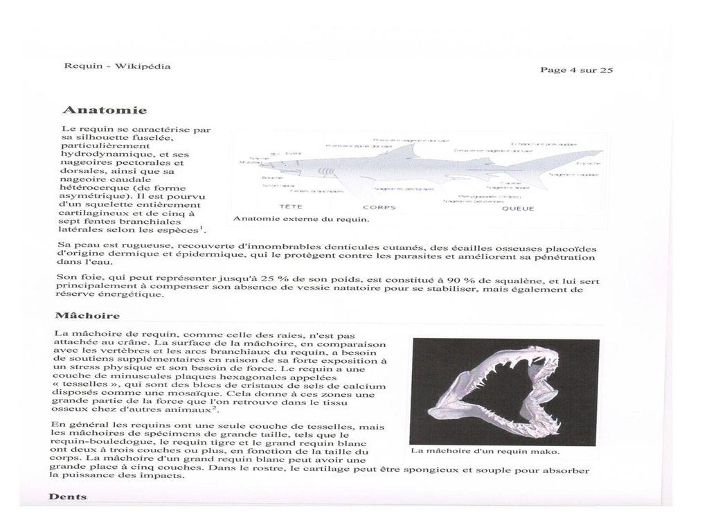 Berühmt Erklärung Der Anatomie Bilder - Anatomie Ideen - finotti.info