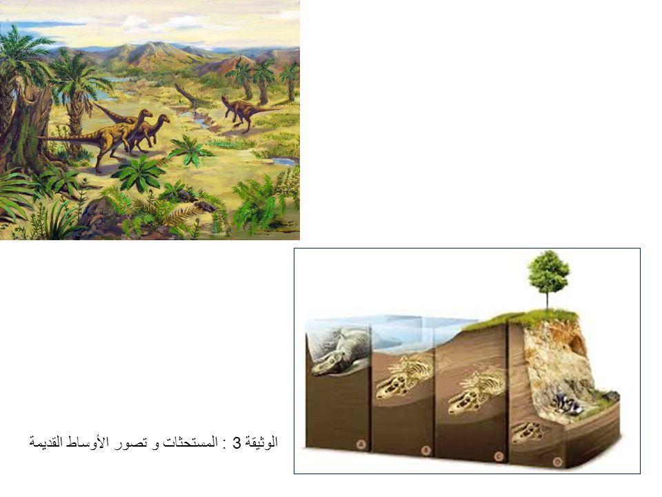الوثيقة 3 : المستحثات و تصور الأوساط القديمة