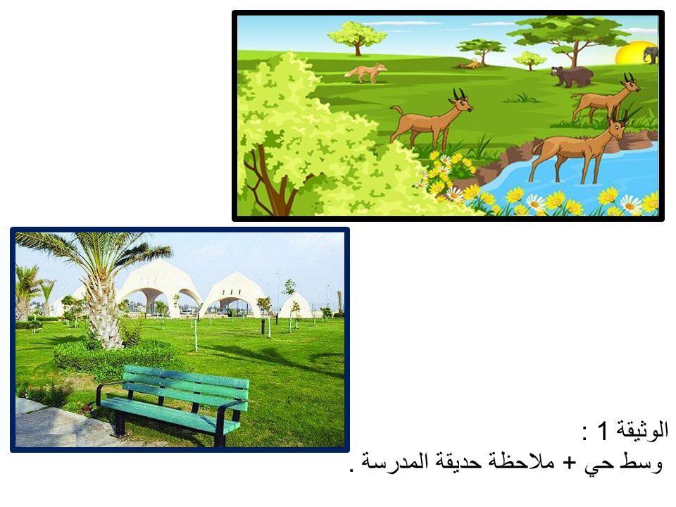 الوثيقة 1 : وسط حي + ملاحظة حديقة المدرسة.