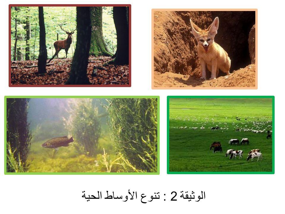 الوثيقة 2 : تنوع الأوساط الحية