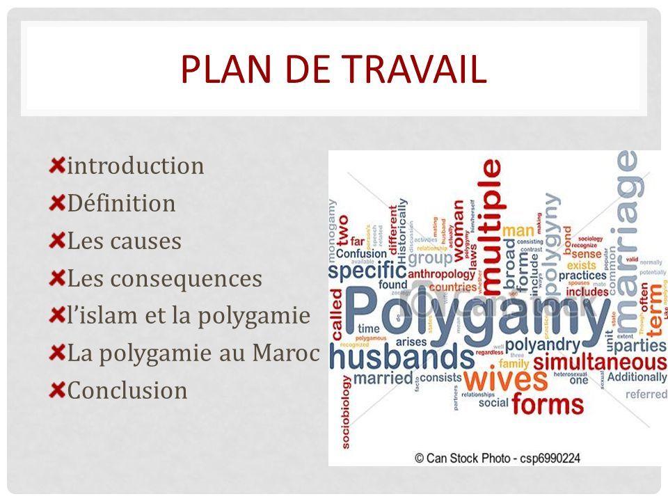 PLAN DE TRAVAIL introduction Définition Les causes Les consequences l'islam et la polygamie La polygamie au Maroc Conclusion