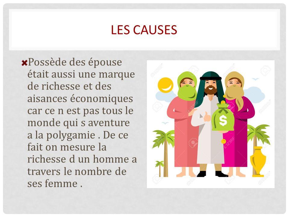 LES CAUSES Possède des épouse était aussi une marque de richesse et des aisances économiques car ce n est pas tous le monde qui s aventure a la polygamie.
