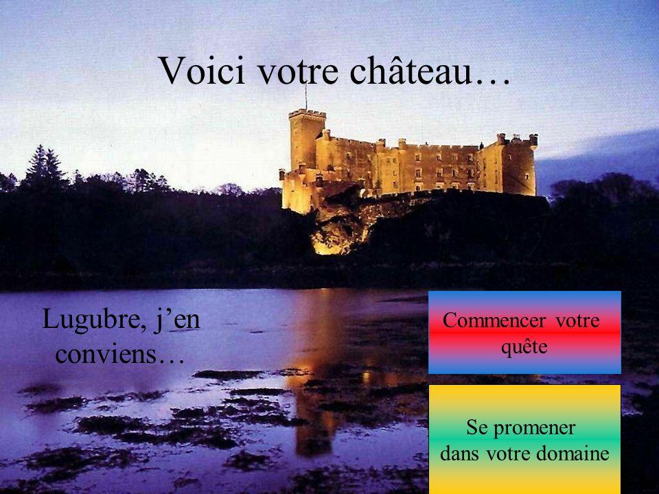 Voici votre château… Lugubre, j'en conviens… Commencer votre quête Se promener dans votre domaine