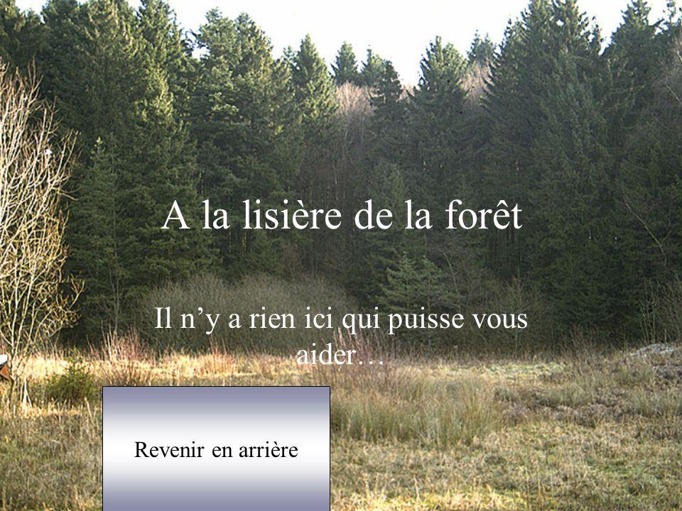 A la lisière de la forêt Il n'y a rien ici qui puisse vous aider… Revenir en arrière