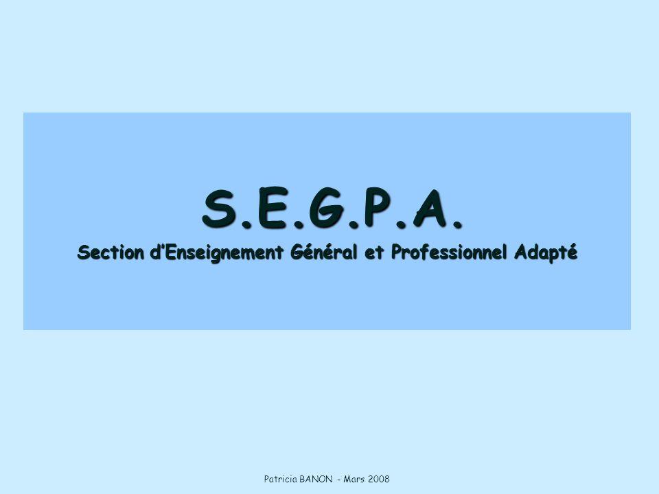 S.E.G.P.A. Section d'Enseignement Général et Professionnel Adapté Patricia BANON - Mars 2008