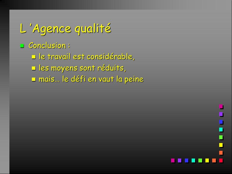 L 'Agence qualité n Conclusion : n le travail est considérable, n les moyens sont réduits, n mais… le défi en vaut la peine