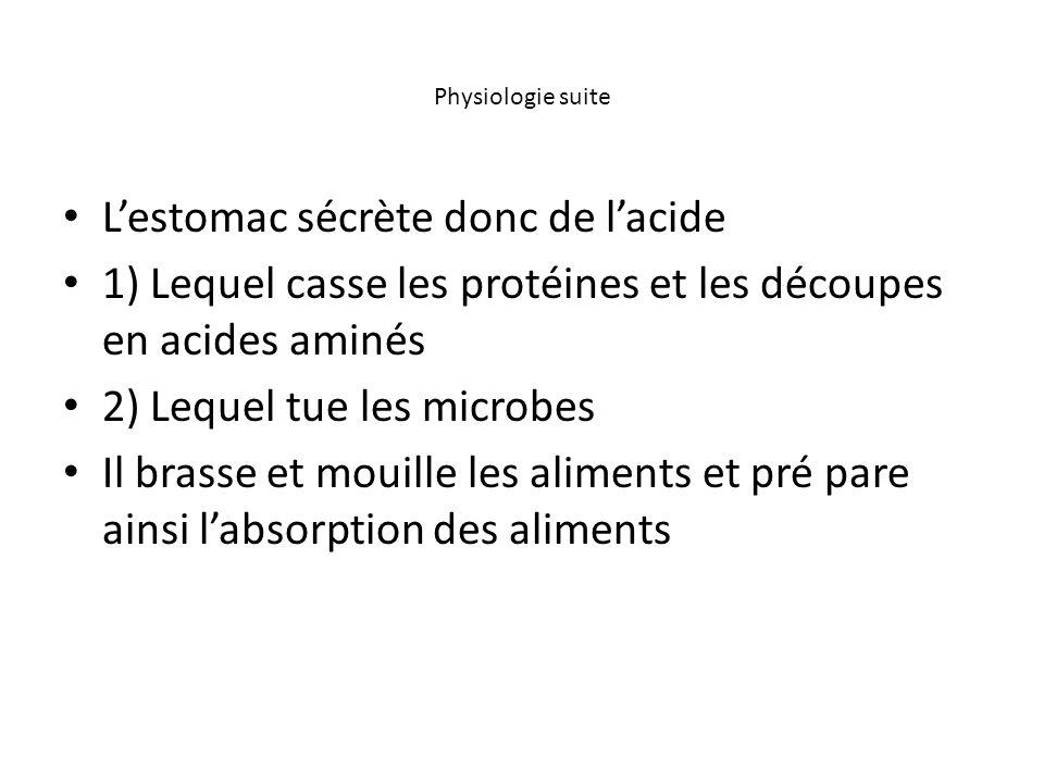 Physiologie suite L'estomac sécrète donc de l'acide 1) Lequel casse les protéines et les découpes en acides aminés 2) Lequel tue les microbes Il brass