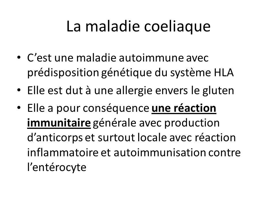 La maladie coeliaque C'est une maladie autoimmune avec prédisposition génétique du système HLA Elle est dut à une allergie envers le gluten Elle a pou