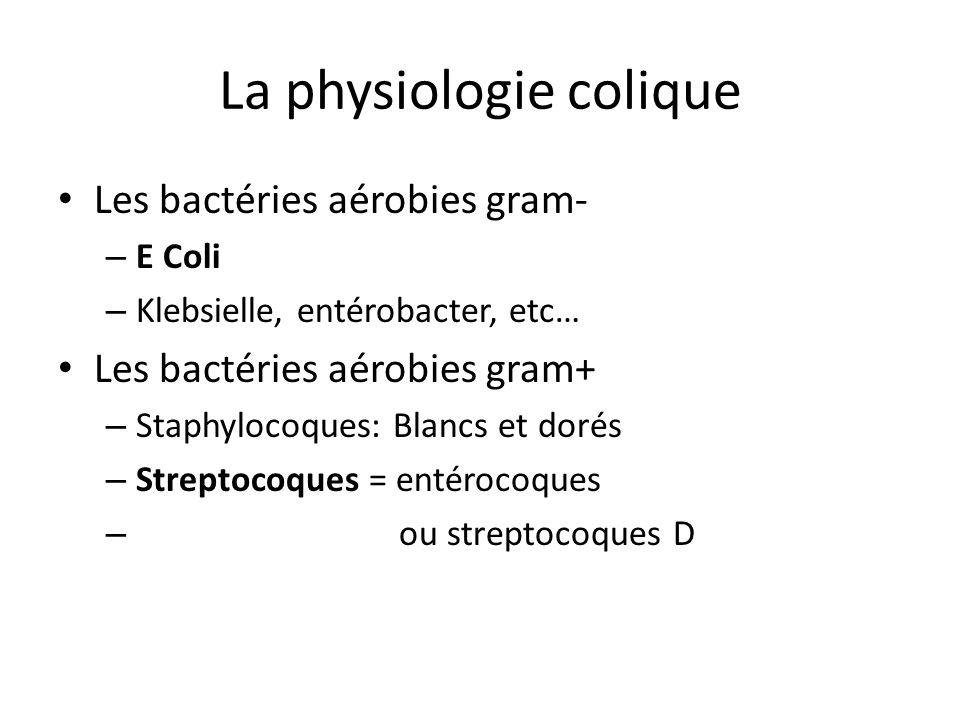 La physiologie colique Les bactéries aérobies gram- – E Coli – Klebsielle, entérobacter, etc… Les bactéries aérobies gram+ – Staphylocoques: Blancs et