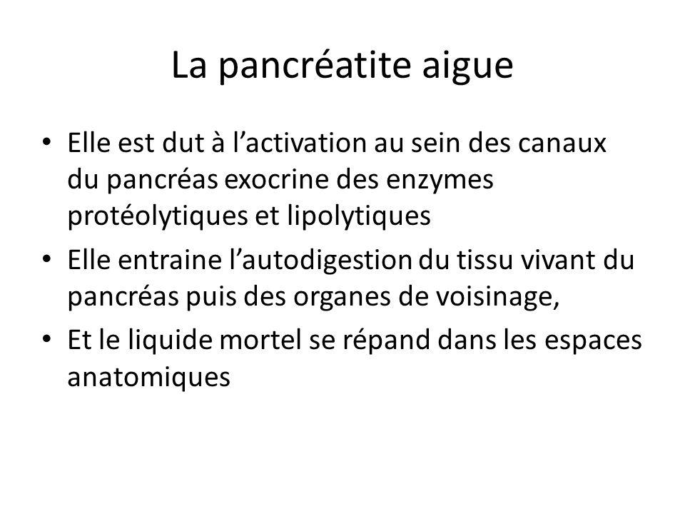 La pancréatite aigue Elle est dut à l'activation au sein des canaux du pancréas exocrine des enzymes protéolytiques et lipolytiques Elle entraine l'au
