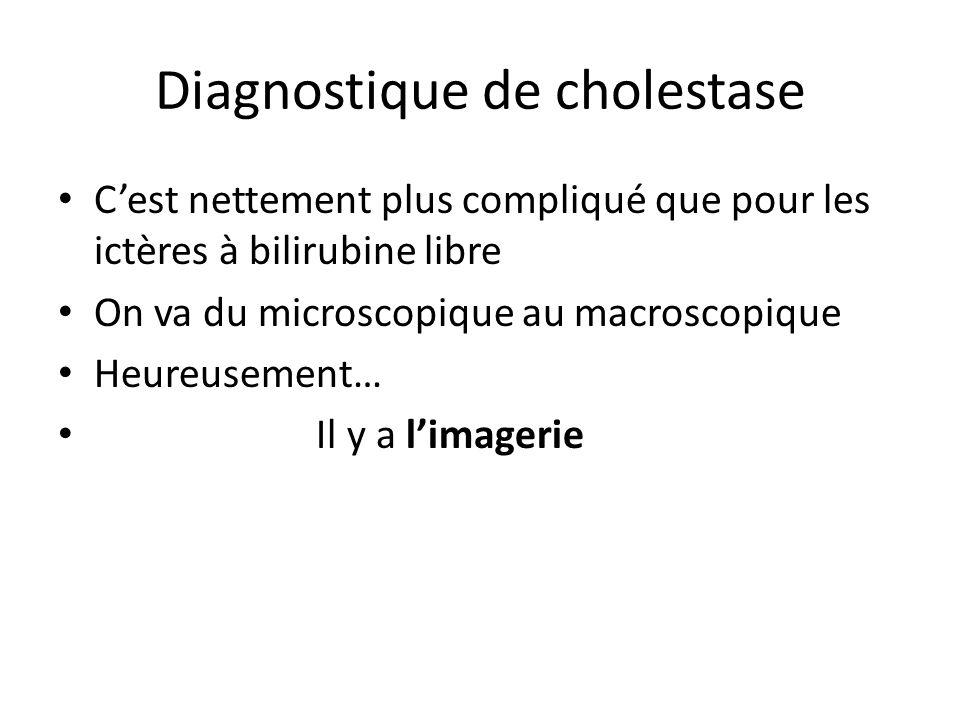 Diagnostique de cholestase C'est nettement plus compliqué que pour les ictères à bilirubine libre On va du microscopique au macroscopique Heureusement