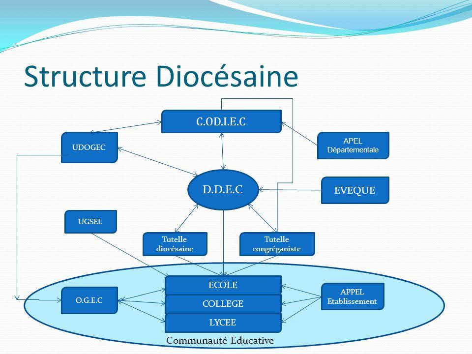 C Structure Diocésaine (Relations avec les pouvoirs publics) D.D.E.C UDOGEC LYCEE ECOLE COLLEGE APEL Départementale EVEQUE O.G.E.C Collectivité locales Mairie C.G.