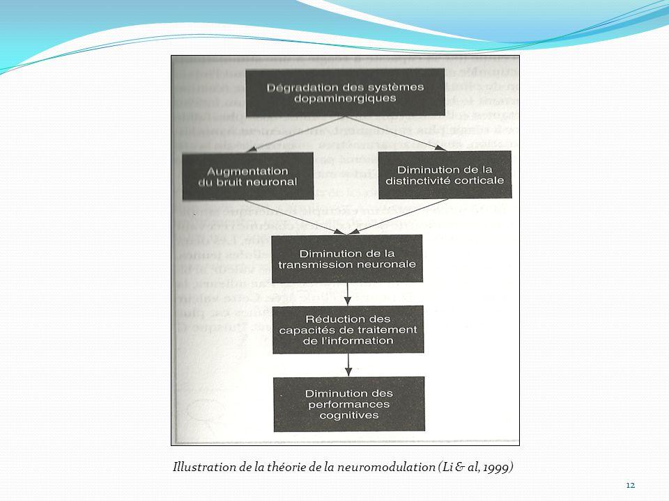 12 Illustration de la théorie de la neuromodulation (Li & al, 1999)