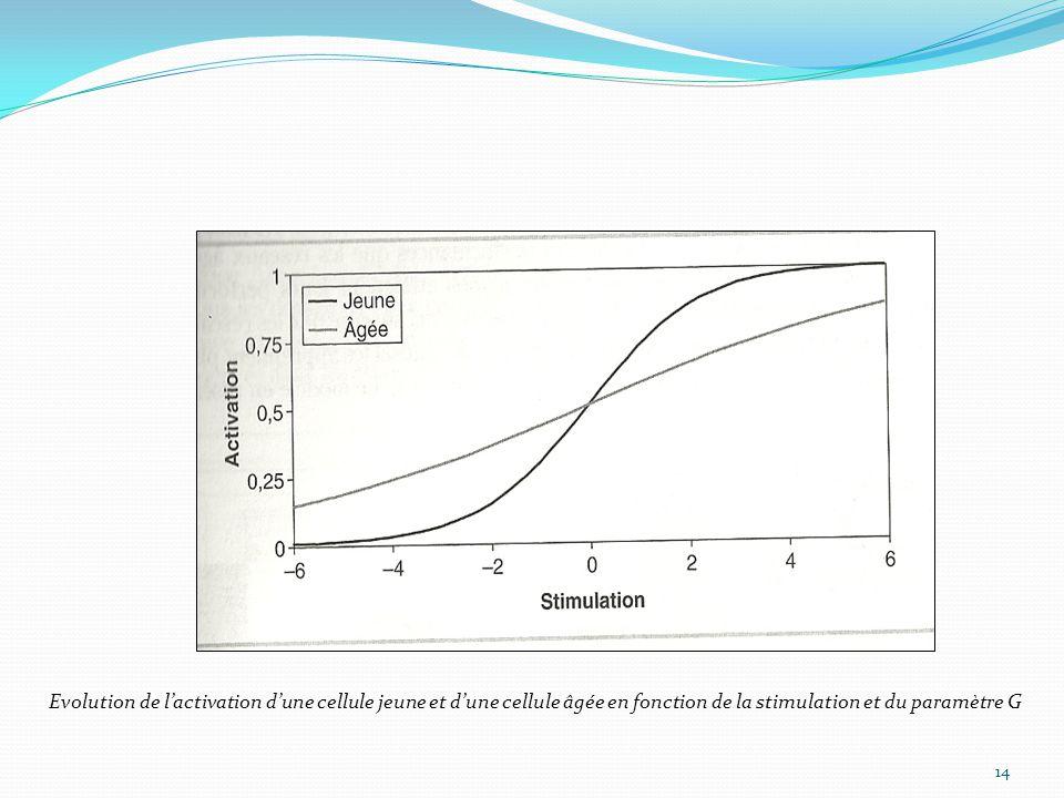 14 Evolution de l'activation d'une cellule jeune et d'une cellule âgée en fonction de la stimulation et du paramètre G