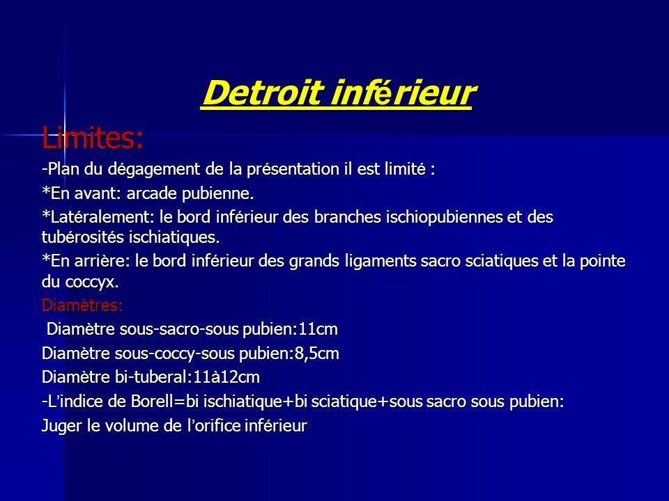 Detroit inf é rieur Limites: -Plan du d é gagement de la pr é sentation il est limit é : *En avant: arcade pubienne. *Lat é ralement: le bord inf é ri
