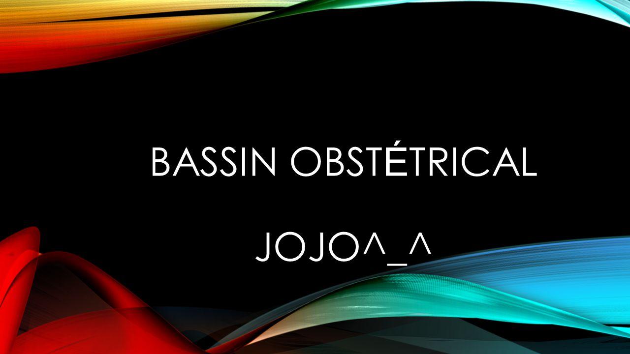BASSIN OBST É TRICAL JOJO^_^