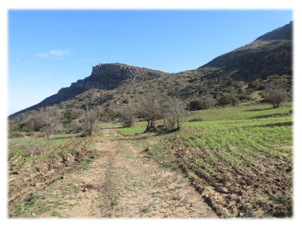 La tour de gué 36°18'09.32 N 10°12'31.26 E Altitude 673m Village berbère de Zriba El Olia : 36°18'38.51 N /10°12'34.13 E Altitude 311 m Distance aller-retour =10 km Durée totale du déplacement : 2h40 Vitesse moy de déplacement : 4km/h Élévation max.