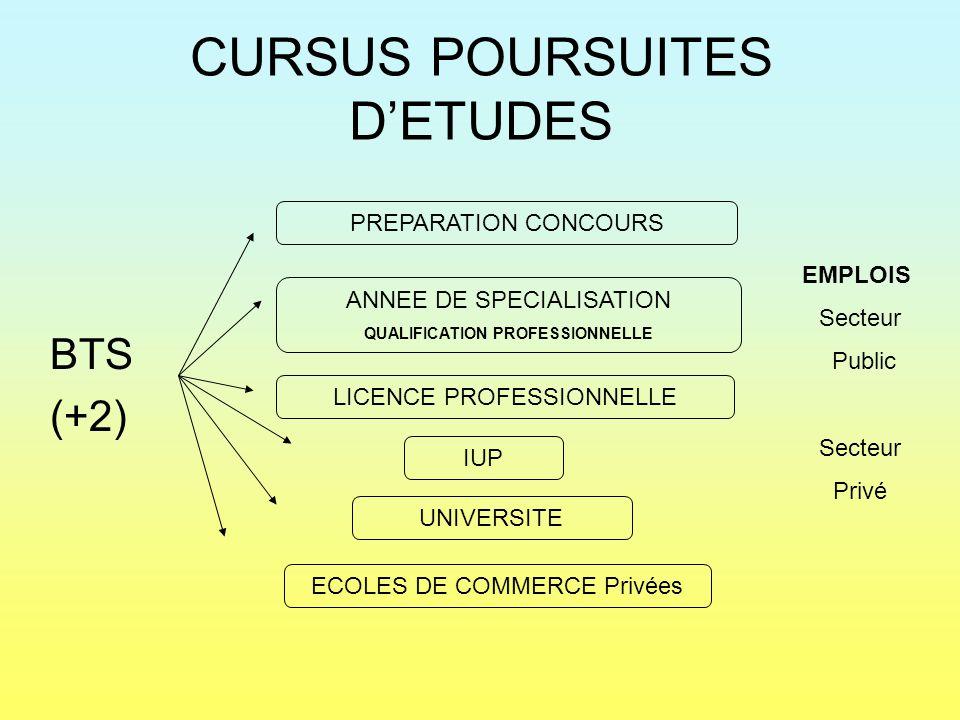 CURSUS POURSUITES D'ETUDES BTS (+2) LICENCE PROFESSIONNELLE ANNEE DE SPECIALISATION QUALIFICATION PROFESSIONNELLE IUP UNIVERSITE ECOLES DE COMMERCE Pr