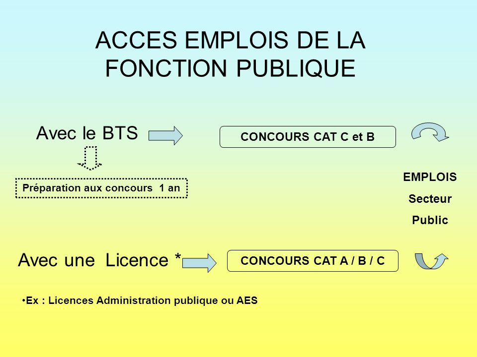 ACCES EMPLOIS DE LA FONCTION PUBLIQUE Avec le BTS CONCOURS CAT C et B EMPLOIS Secteur Public Avec une Licence * CONCOURS CAT A / B / C Ex : Licences A