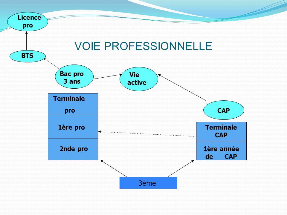 VOIE PROFESSIONNELLE 3ème 2nde pro 1ère pro Terminale pro Bac pro 3 ans 1ère année de CAP Terminale CAP CAP BTS Vie active Licence pro