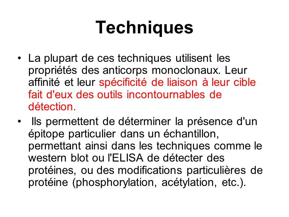 Techniques La plupart de ces techniques utilisent les propriétés des anticorps monoclonaux. Leur affinité et leur spécificité de liaison à leur cible