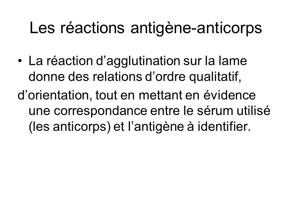 Les réactions antigène-anticorps La réaction d'agglutination sur la lame donne des relations d'ordre qualitatif, d'orientation, tout en mettant en évi