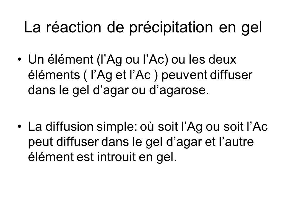 La réaction de précipitation en gel Un élément (l'Ag ou l'Ac) ou les deux éléments ( l'Ag et l'Ac ) peuvent diffuser dans le gel d'agar ou d'agarose.