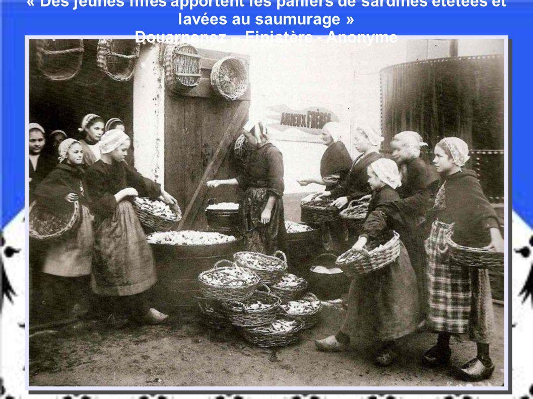 1913 Thoniers de Groix à Douarnenez Anonyme « Il n'est de pêche que thonière »