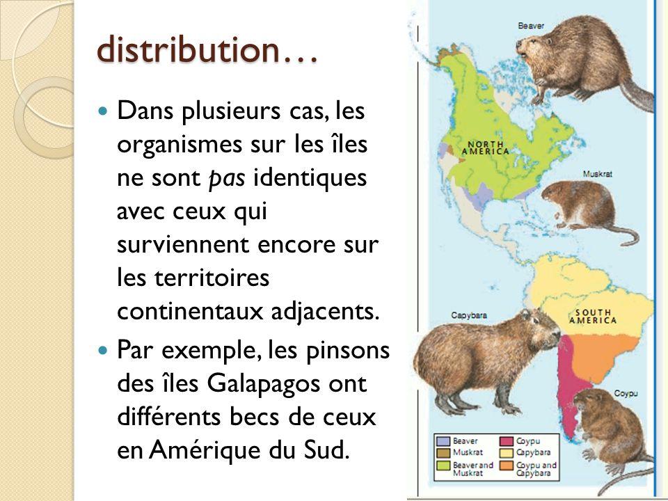 distribution… Dans plusieurs cas, les organismes sur les îles ne sont pas identiques avec ceux qui surviennent encore sur les territoires continentaux